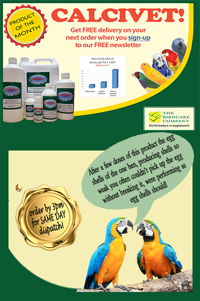 calcivett-home-page-with-testimonial.png