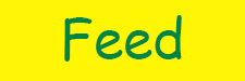 feed-new.png